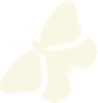 Logo Butterfly Ivory.png