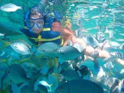 Live the Snorkeling Adventure