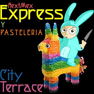 Express Icon.jpg