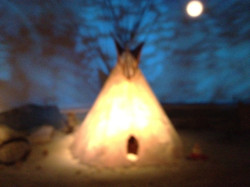 Study Native American History