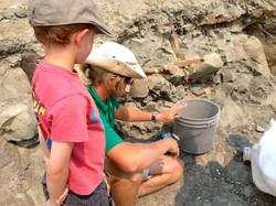 Be a Paleontologist