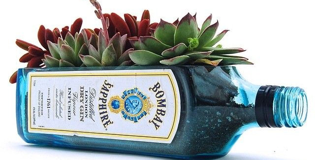Bombay Sapphire Gin Liquor Glass Bottle Succulent Planter Pot | Upcycled gift