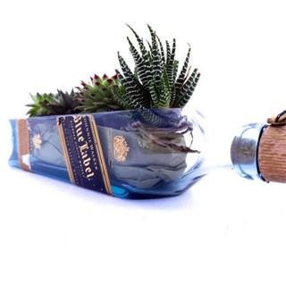 blue label planter.jpg