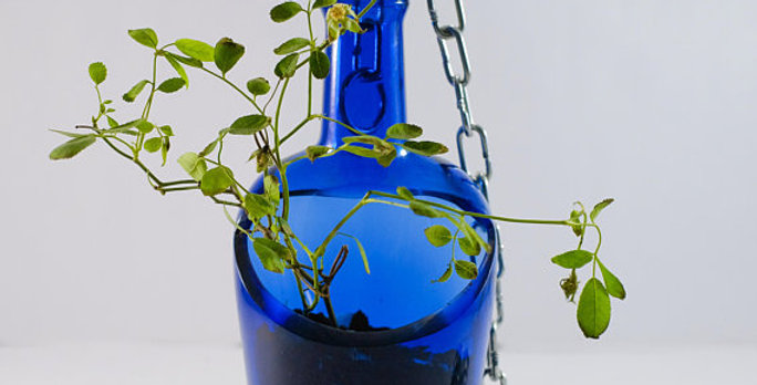 Beautiful Cobalt Blue Hanging Succulent Planter Pot Made from Whiskey Bottle