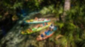 Rainbow Springs Drone_-11.jpg
