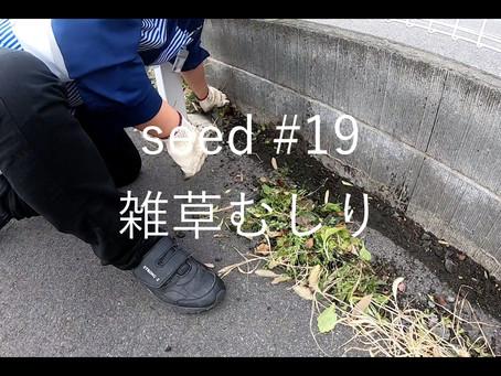 雑草むしり ローソン鹿沼西茂呂三丁目店