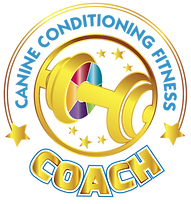 CCFCcoachGoldpng.png