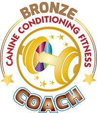 BronzeCCFC-lg.png