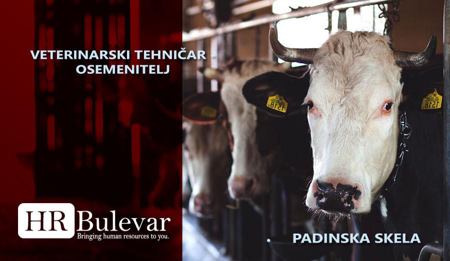 veterinarski tehničar, osemenitelj, Pomocni radnici u proizvodnji, Pomocni radnik, vozdovac poslovi, poslovi, posao