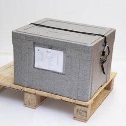 55l Box