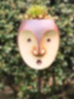 PebbleHead.jpg