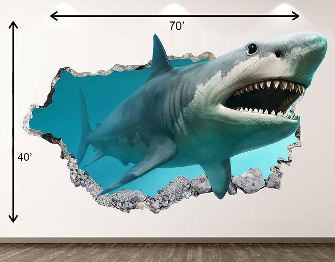 shark braking walll.jpg