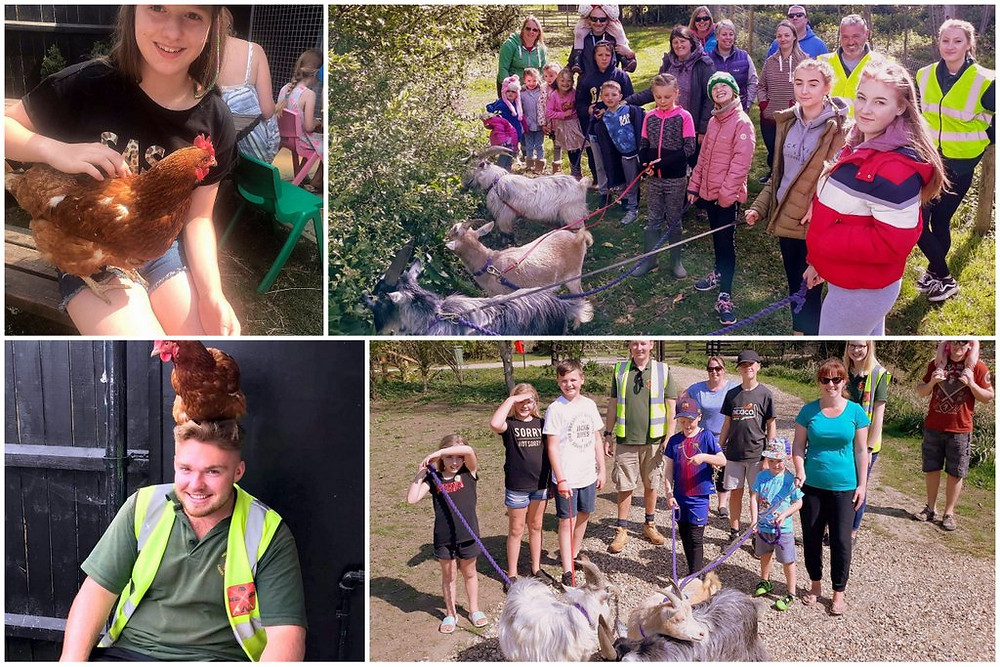 Staff and guests enjoying the goat walking and animal petting sessions