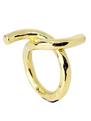 anillo lazo