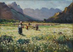 Hugo Naude Chinchirenchees Valley