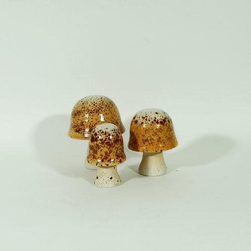 Set paddenstoelen - lichtbruine amaniet