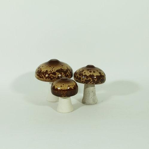 Set paddenstoelen - parasolzwam II