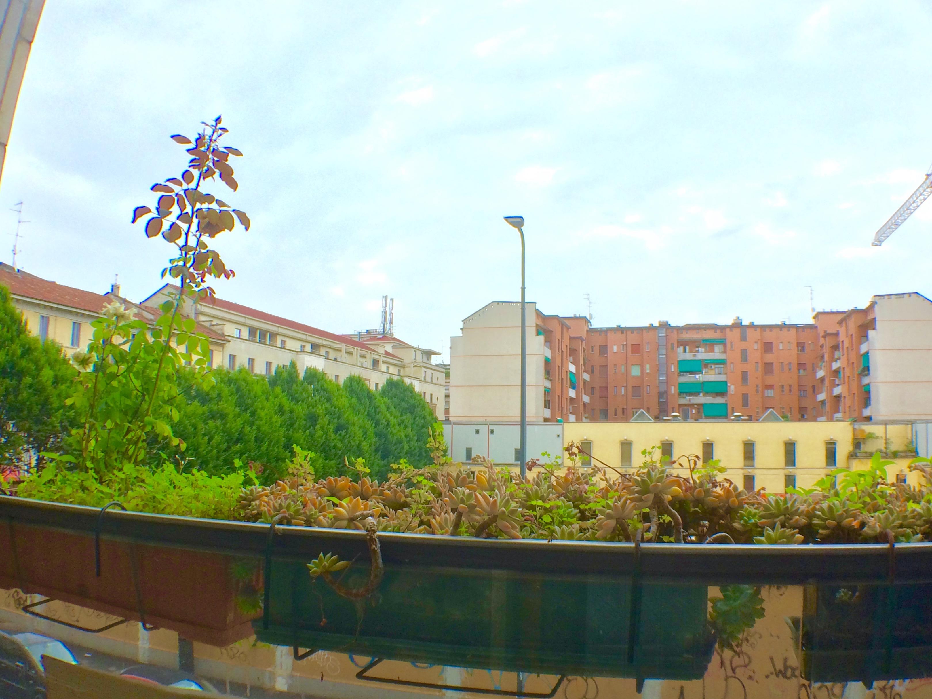 milano affitto bilocale ristrutturato porta romana arredato nuovo balcone-04.jpg