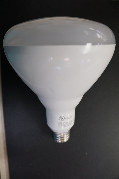 LED Bulb - BR 40 20W Dimmable
