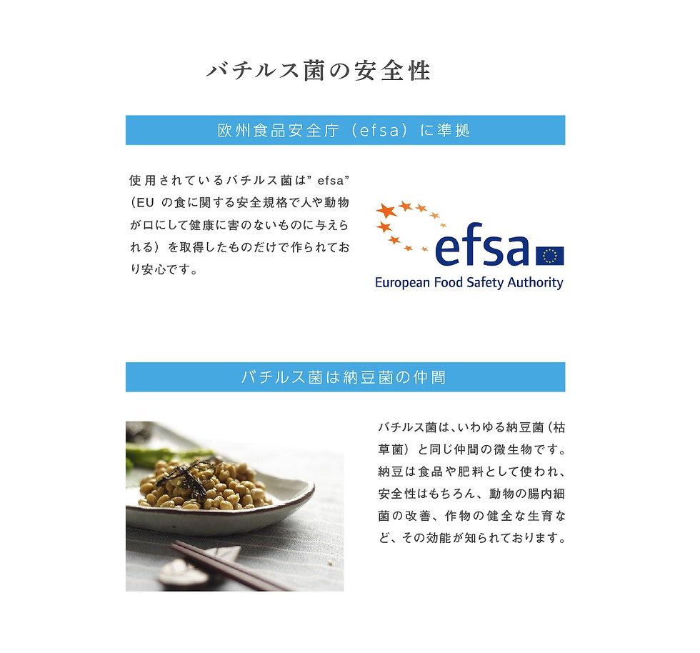 sukoyaka11.jpg