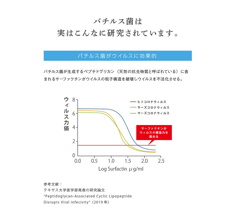 sukoyaka12.jpg