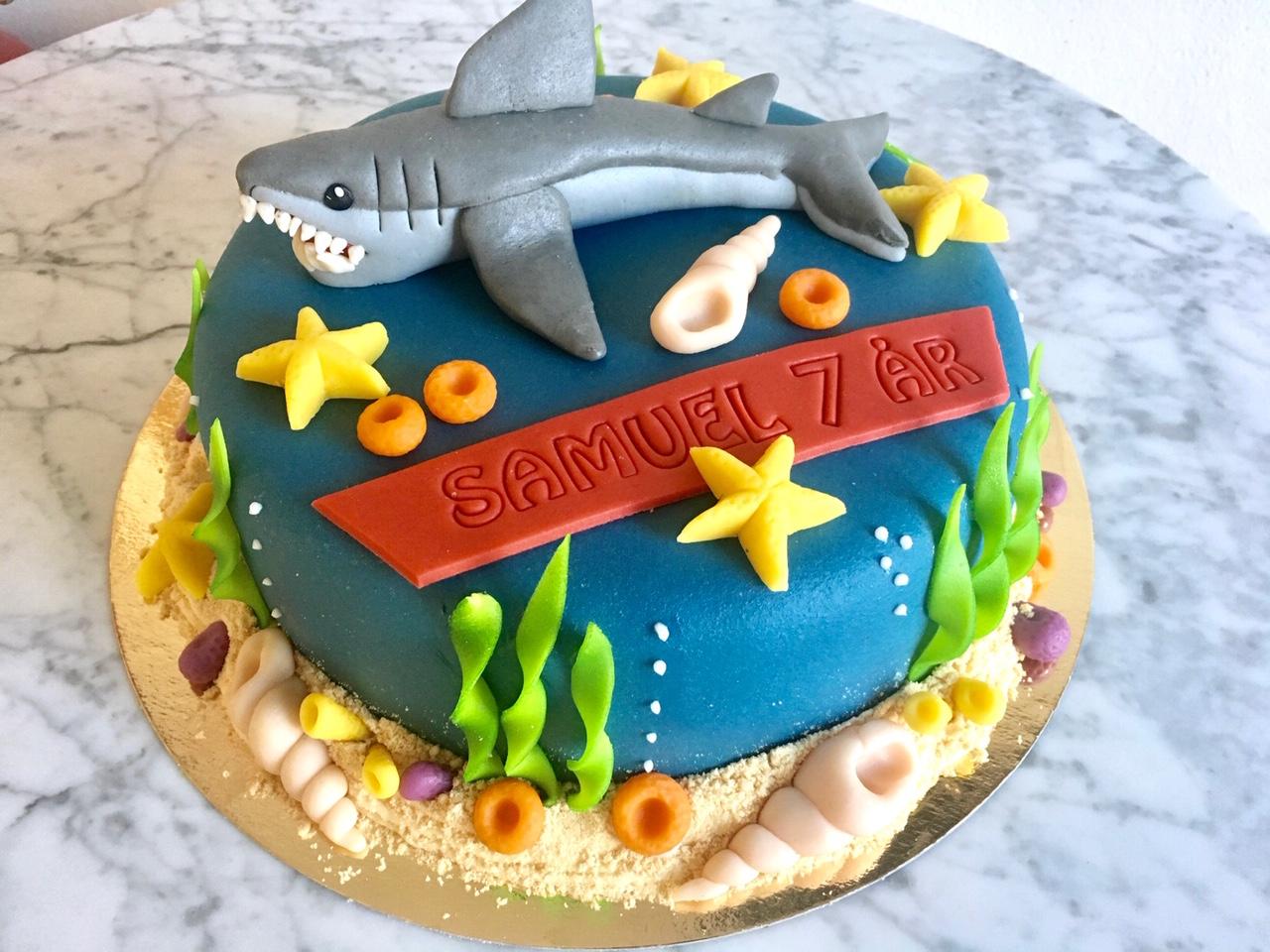 Havs-tårta Haj