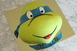 Ninja Turtle, huvud
