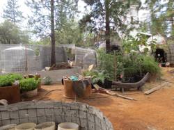 garden-in-process.jpg