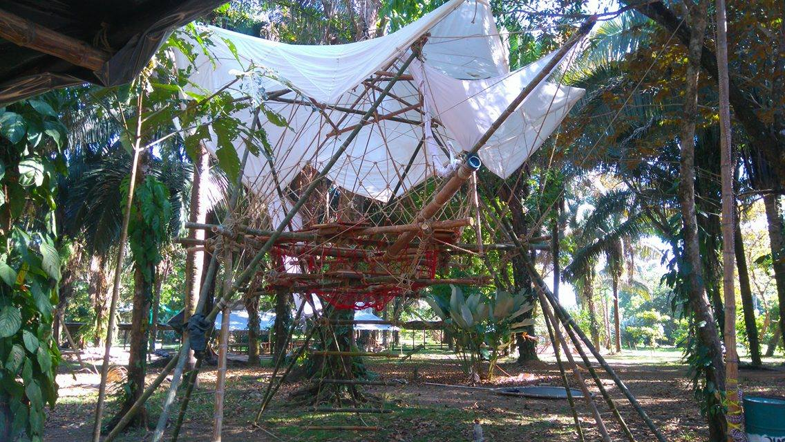 envisiontreehouse5