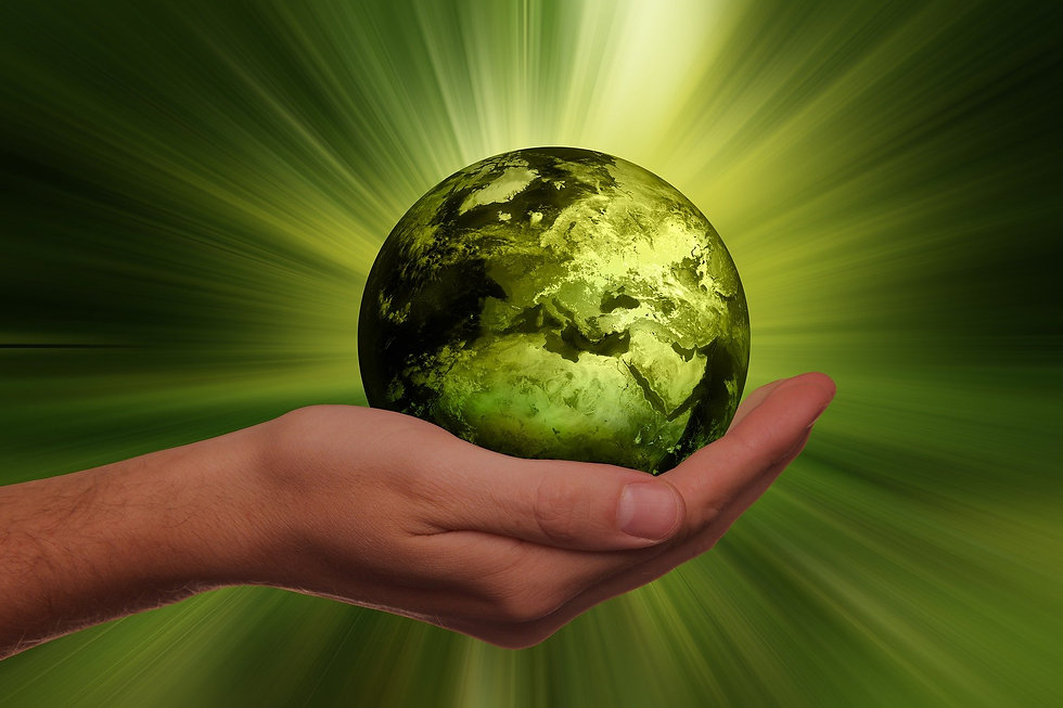 sustainability-3300869_1920.jpg