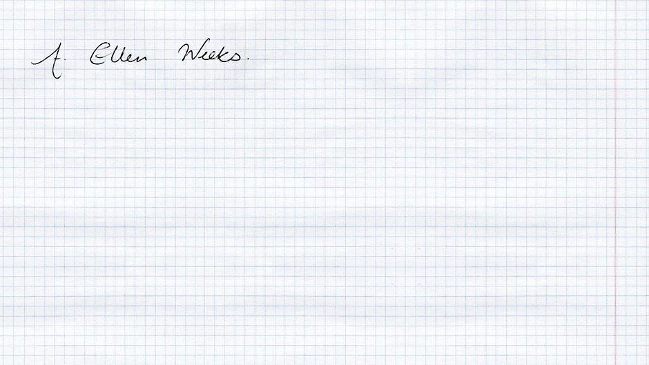 paper-texture-cells2.jpg
