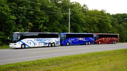 Trobecs Bus