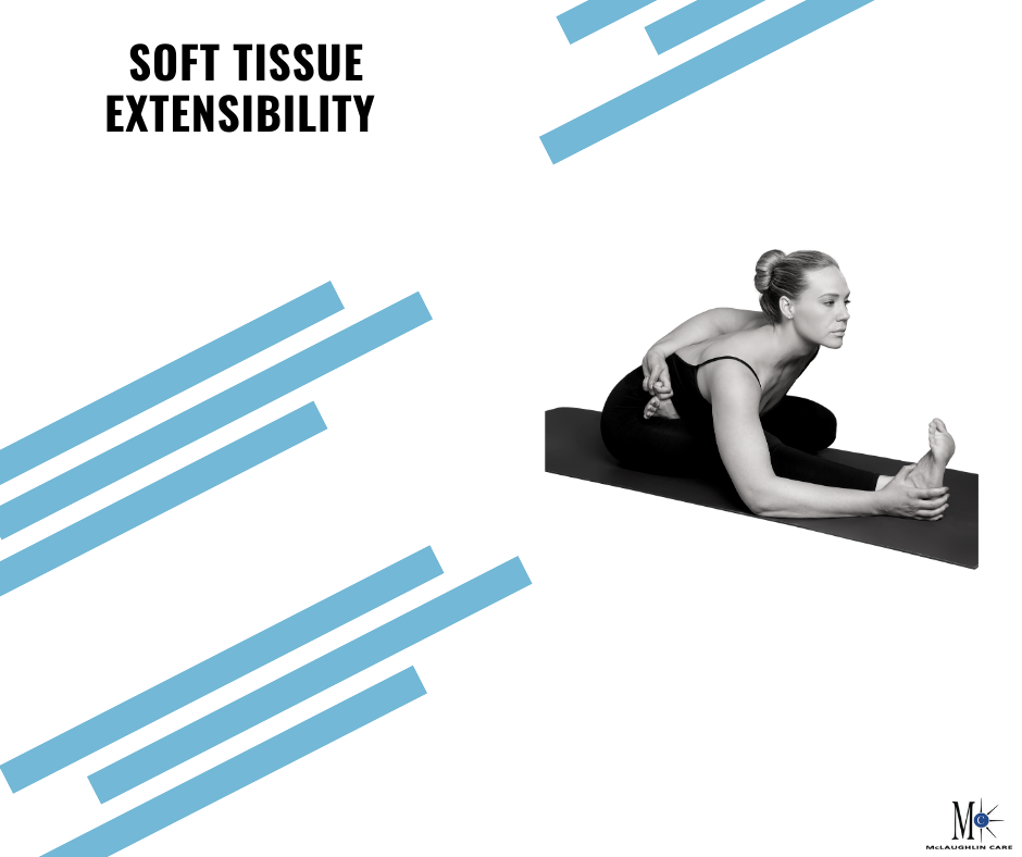 Soft Tissue Extensibility