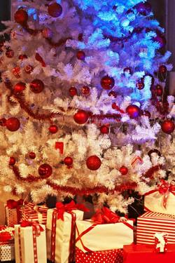 weihnachtsbaum_laufsteg.jpg