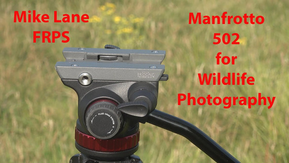 Manfrotto 502 video head review