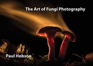 Paul Hobson