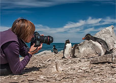 Dawn Osborn_Dawn_Falklands.jpg