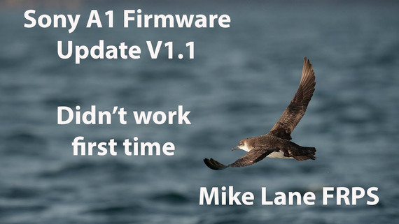 Sony A1 Firmware Update V1.1
