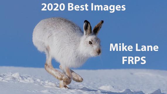 2020 Best Images