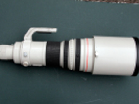 600mm lens pictures