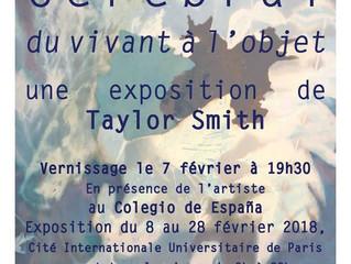 EXPOSITION - TAYLOR SMITH - Végétal / Cérébral