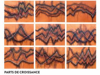 EXPOSITION : CHRISTIAN JACCARD - PARTS DE CROISSANCE -