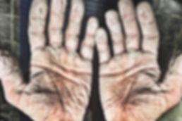 090517-arctic-hands-2.jpg