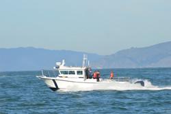 3200 Whaleback