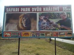 Plakát na Zoo Dvůr Králové nad Labem