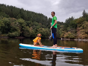 PADDLEBOARDING WITH YOUR DOG - TIPS & TRICKS