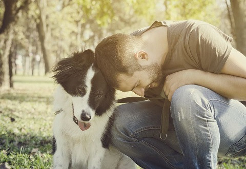 Pet Owner and His Dog Bonding Together Through Dog Training Classes