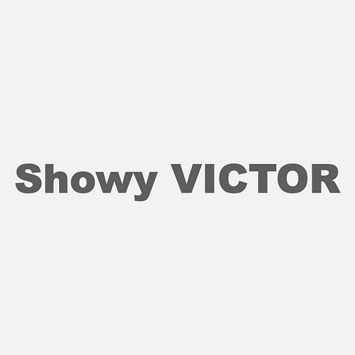 TRACK02/Showy VICTOR