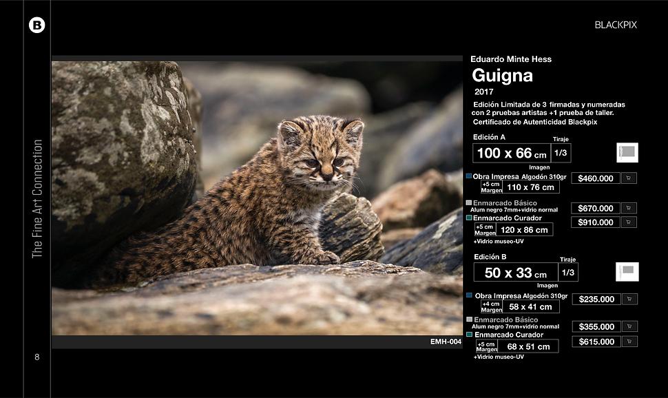 Captura de pantalla 2020-01-23 a la(s) 1