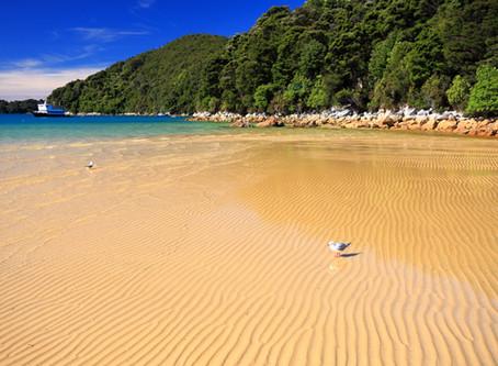 As 10 mais belas praias de Florianópolis